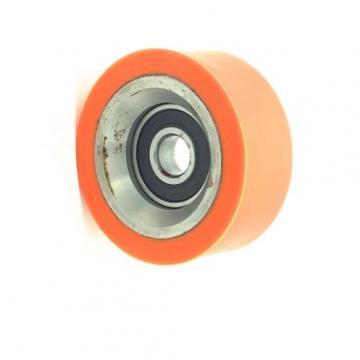 SKF 2205e-2RS1-Tn9 Self-Aligning Ball Bearing 2206etn9, 2207etn9, 2208etn9, 2210etn9 2RS1 C3